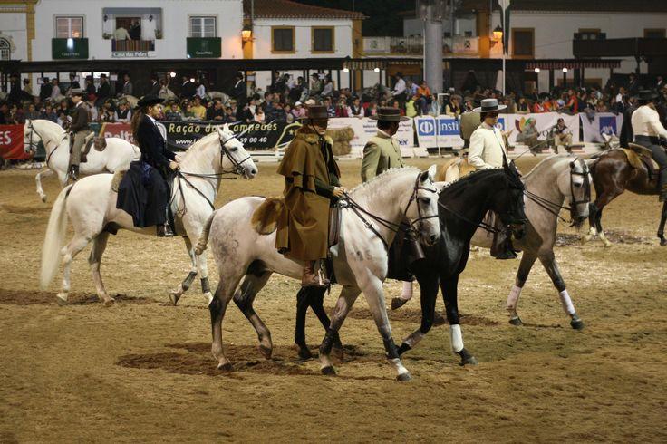 Feira_Nacional_do_Cavalo_75g.JPG (3504×2336)