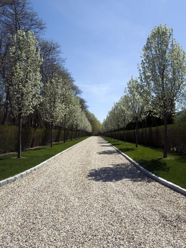 Tree-Lined Entryway : Landscaping   Barry Block : Garden Galleries : HGTV - Home & Garden Television