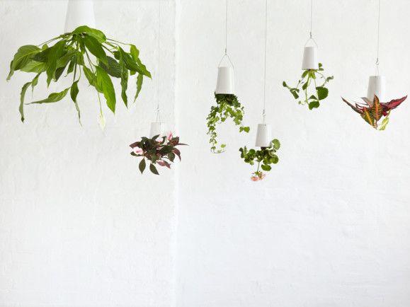 Sky planter - small