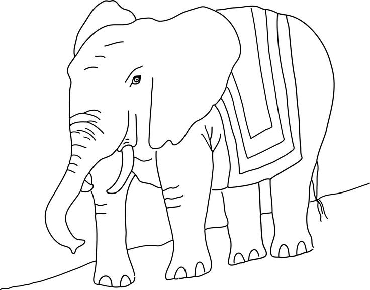 Color Saru's Father! A wonderful elephant! Pinta Papa Saru, un elefant molt bonic i gran! Pinta Papa Saru un elefante muy guapo y enorme :-)