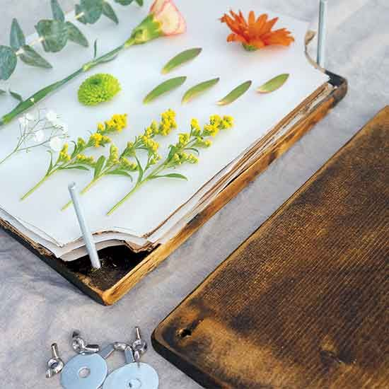 Build a simple, wooden flower press to preserve the color and integrity of your favorite plants.