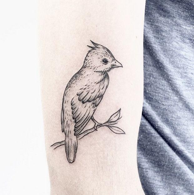 Linhas finas, inspiração na natureza e tinta preta. Caitlin Thomas, também conhecida como LucidLines, cria incríveis tatuagens utilizando apenas uma agulha.