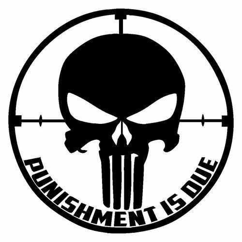 Punisher die cut vinyl decal for windows vehicle windows vehicle body surfaces or just about any surface that is smooth and clean