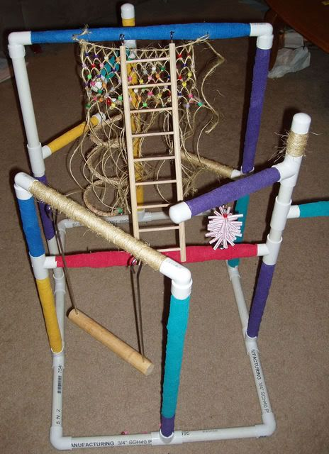 For the Bird Lovers.... Jungle Gym for Birds | PVC ...