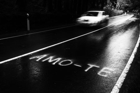 (Amo-te) - I love you. Photo by Rui Caria -- National Geographic Your Shot
