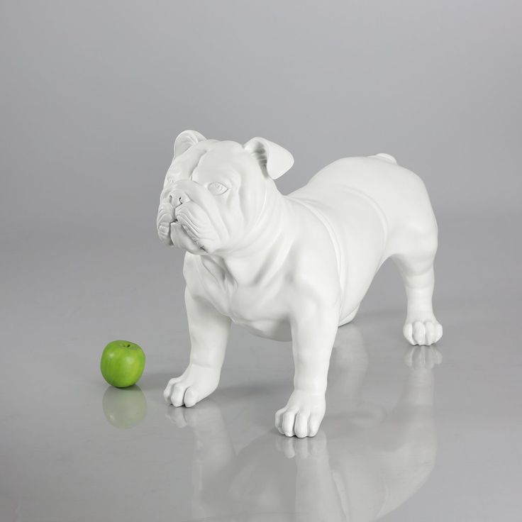 English Bulldog Mannequin Matte White Pet Clothes Pet