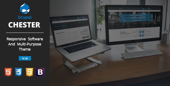 Chester Multi-Purpose And Software Drupal 7 Theme (Drupal)