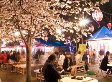 Parcs et jardins : au Japon, mettez-vous au vert ! |vivrelejapon.com