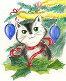 Cat and Christmas decorations Royalty Free Stock Photos