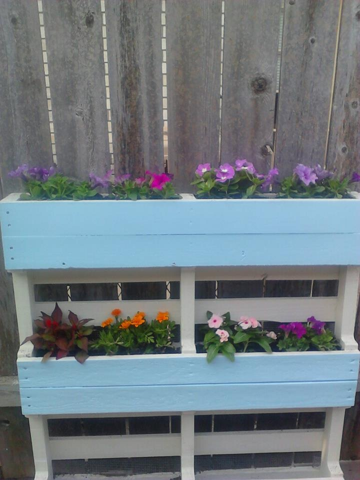 Pallet Planter - Love this idea.  Anyone know where I can get some free pallets?