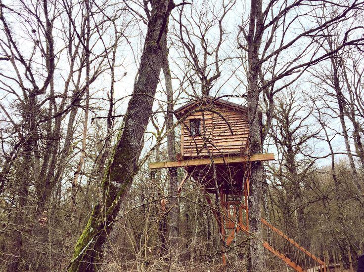 Basoa Suites, Beigorri treehouse.