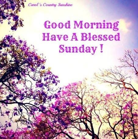 Good Morning Have A Blessed Sunday good morning sunday sunday quotes good morning quotes happy sunday good morning sunday quotes happy sunday morning sunday morning facebook quotes sunday image quotes happy sunday good morning