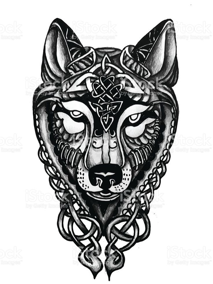 Stylized Wolf Head In Celtic Knots Symbols Tattoo Design