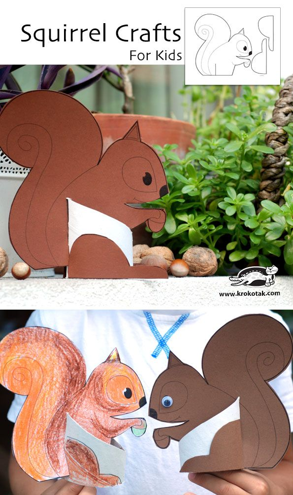 Squirrel Crafts for Kids