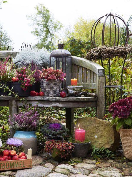Die Natur bittet zur Gala und schenkt uns noch einige Blüten und Beeren. Herbstastern und Chrysanthemen zeigen sich üppig, und Vogelbeeren