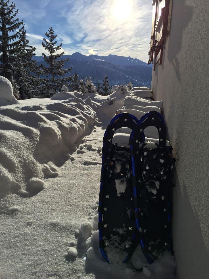 Sneeuwschoen- Sneeuwschoenwandelen rechtstreeks vanuit chalet Ursa minor