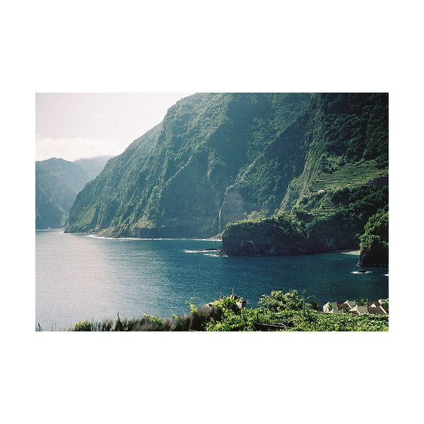 your bones are my bones. found on Polyvore featuring pictures, backgrounds, photos, nature, green and scenery