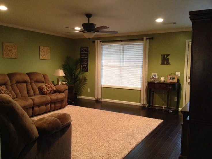 28 best images about wall colours on pinterest green wall color olive green walls and dark for Green and brown living room walls