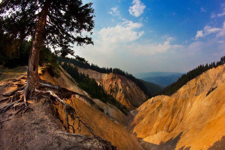 Groapa Ruginoasă.   Rezervație naturală, situată în Munții Bătrâna, la est de Pasul Vârtop, în județul Alba, Transilvania. Reprezintă un caz interesant, unic în Europa, de adaptare a reliefului la alcătuirea geologică; este vorba de bazinul gigantic al unui torent a cărui geneza este intim legată de prezența unei stive de gresii suprapuse calcarelor care, dizolvate carstic