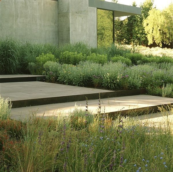 Modern Landscape: A Muted Palette Of Native Plants Harmonize With Stepped