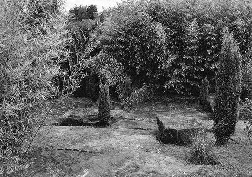 Gilles Clément: clairière de la lande, Parc Henri Matisse, Lille, 1995