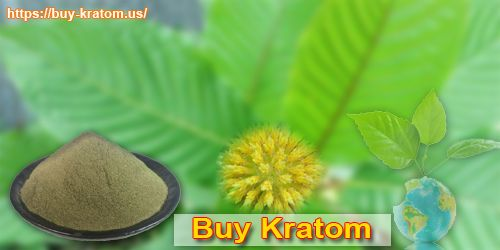 Kindly visit to more info in this web site:-https://buy-kratom.us/