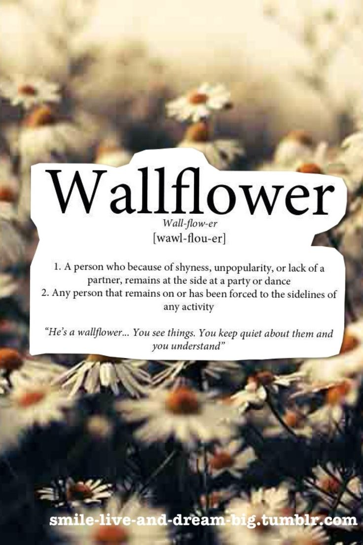 17 best wallflower quotes being sad quotes the perks of being a wallflower i actually swear i was just watching this movie and the credits r rolling whilst david bowie sings heroes at the top of his