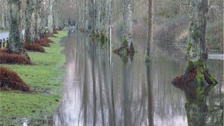 Arundel near Swanbourne Lake. The floods in England leave a tree linesd flooded road.