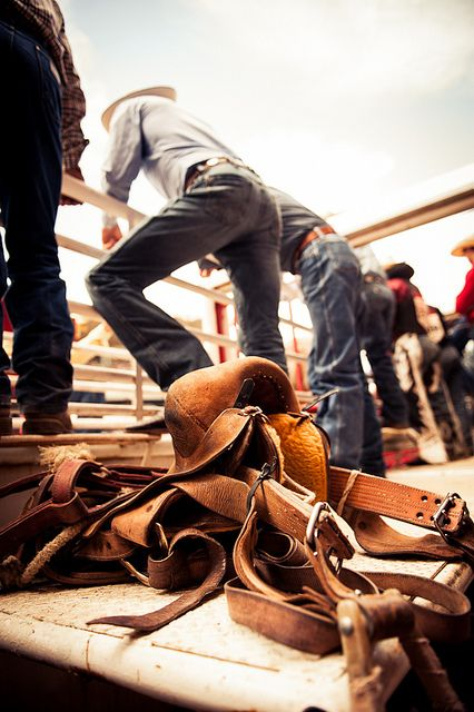 From the Chutes, view where  cowboys get on those wild horses and killing bulls. There's no turning back once you're in that chute!