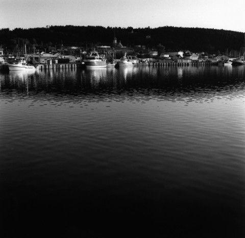Le quai de Fox! - Fox's jetty - mlheureuxroy