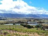 view onto the Tulbagh valley from Saronsberg
