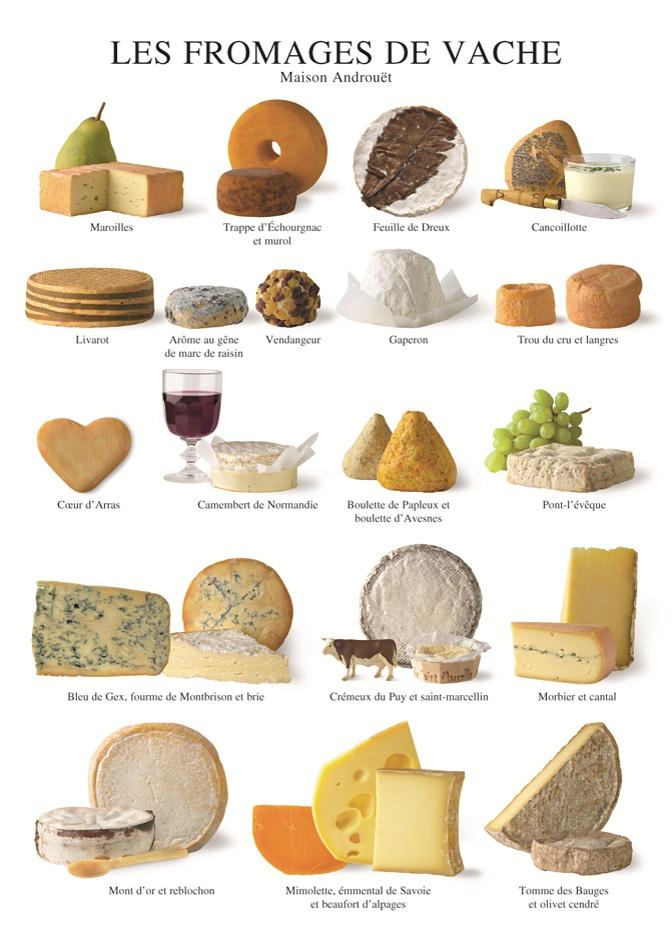 Fromages de vache, Atelier Nouvelles Images