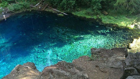 Photos of Tamolitch Pool Trail, Cascadia - Attraction Images - TripAdvisor