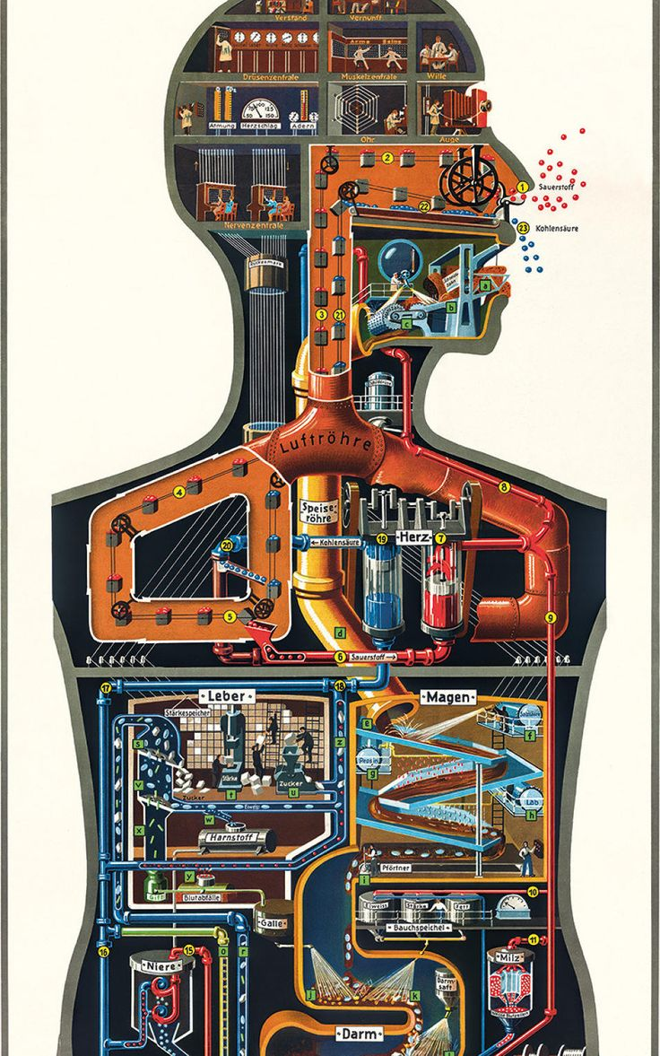 Born in 1888, German scientist, doctor, and author Fritz Kahn was the grandfather of modern data visualization.