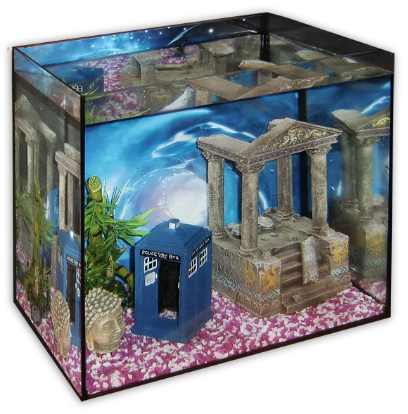 Best 25 Fish Tank Bed Ideas On Pinterest Buy Fish Tank