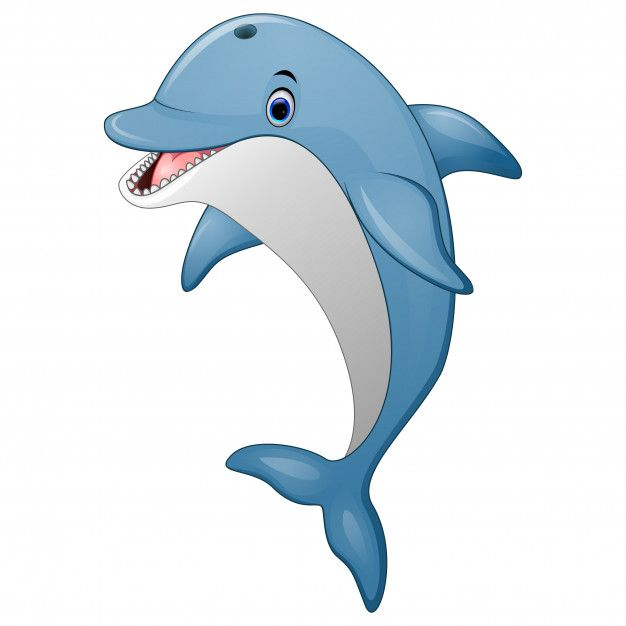 Standing Dolphin Cartoon Dolphin Drawing Cartoon Dolphin Cartoon Drawings