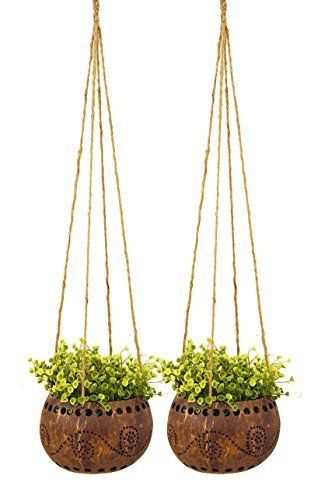 "Exotic Elegance Set of 2 Garden Decorative 4 1/2"" Coconut... http://smile.amazon.com/dp/B00T1Q38XU/ref=cm_sw_r_pi_dp_.EOgxb0YCG4TJ"