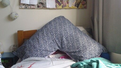Awesome double sided tri pillow I made in fabrics pic 1
