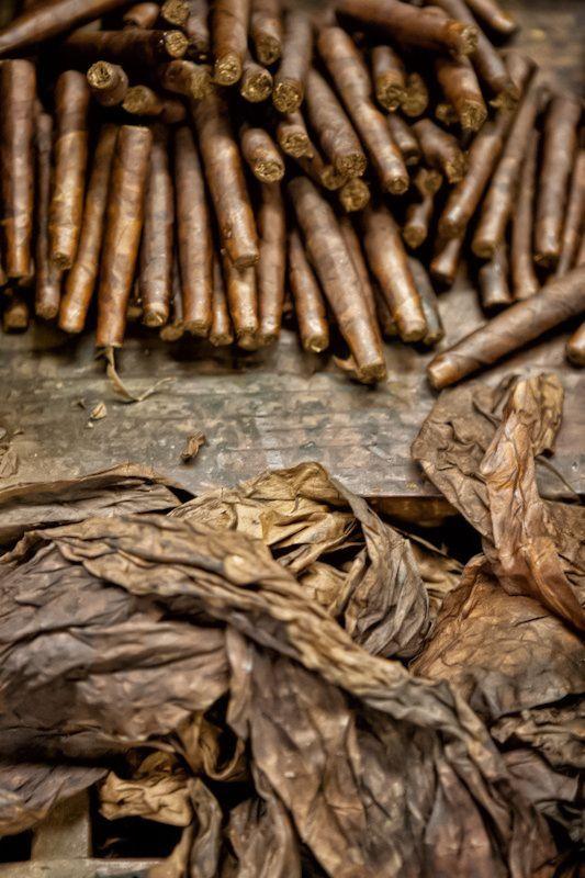 Cigar Tobacco Photography