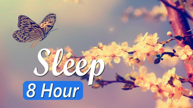 8 Hour Deep Sleep Music: Sleeping Music, Sleep Meditation, Relaxing Musi...