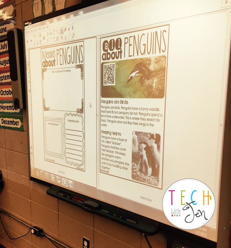 expository writing lesson (on penguins)