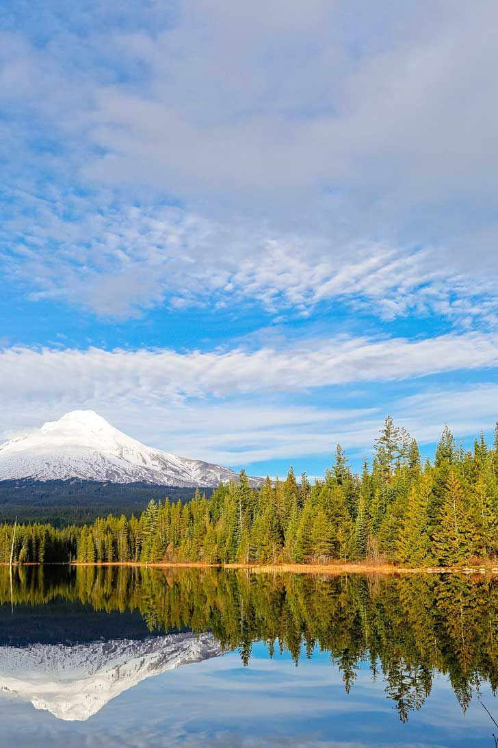 Snowshoeing Trillium Lake - If you're new to snowshoeing, you need to check out Trillium Lake. You can go cross country skiing to get to Trillium Lake. // http://localadventurer.com