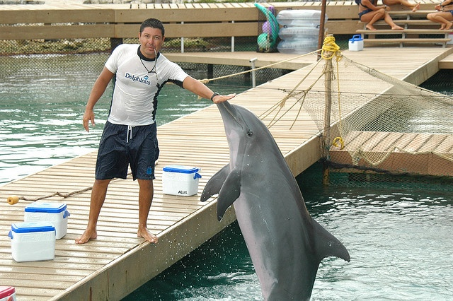 Trainer for a Day at Delphinus Riviera Maya #SwimWithDolphins