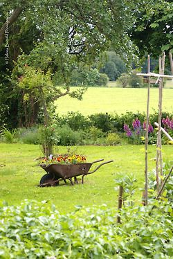 Out in the garden with an old-fashioned wheelbarrow...love this, and it's just how we look when we're planting our flowers!-