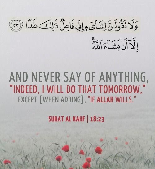 Quran Quotes 3