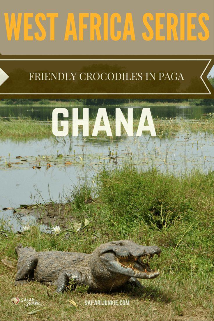 Paga Crocodiles in Ghana