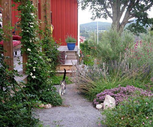 På bara fyra dagar hade Maud och Kjell fått ett lättskött och blomstrande trädgård!