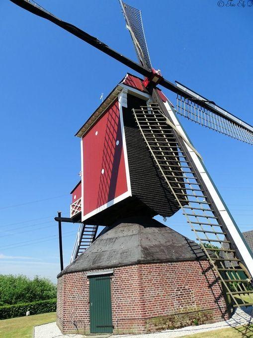 "Photo ""windmillBeegdenHolland"" by ellydiestelhofsigon"