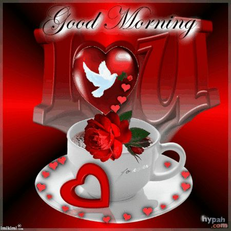 Good morning sister and all, have a wonderful Wednesday, God bless♥★♥.