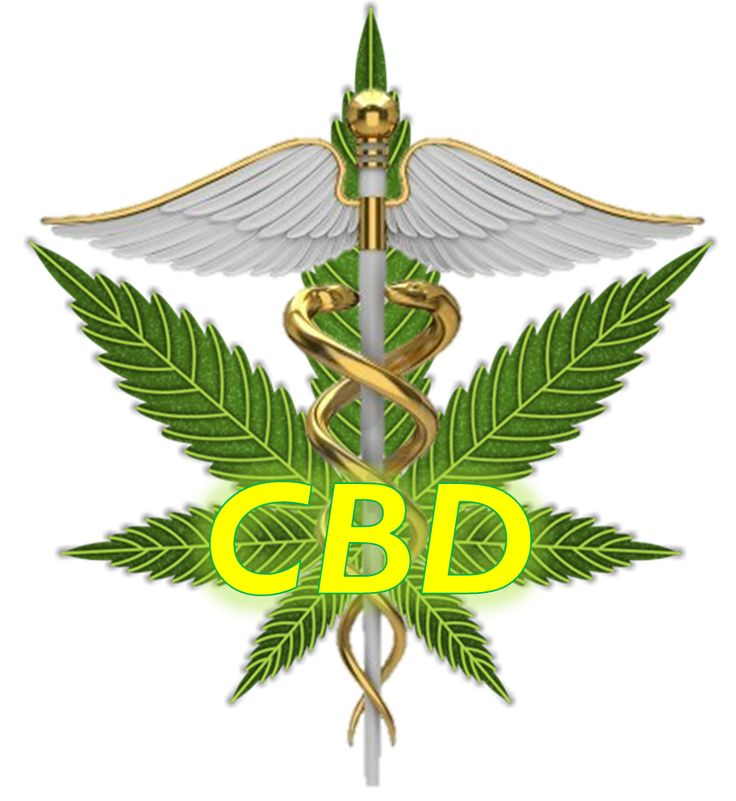 Image result for cannabis cbd